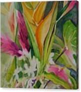 Golden Haleconia Canvas Print