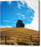 Golden Hills Summer Sky Canvas Print