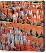 Golden Hour At Bryce Canyon 3 Canvas Print