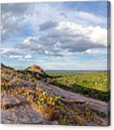Golden Hour Light On Turkey Peak And Prickly Pear Cacti - Enchanted Rock Fredericksburg Hill Country Canvas Print