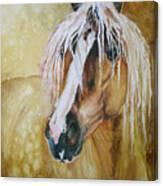 Golden Lance Canvas Print