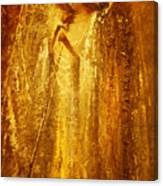 Golden Light Of Angel Canvas Print