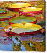 Golden Light on Pond Canvas Print