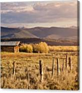 Golden Lonesome Canvas Print