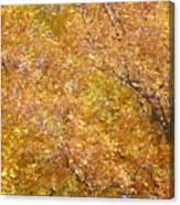Golden Canvas Print