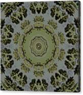 Mandala In Pewter And Gold Canvas Print