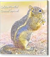 Golden-mantled Ground Squirrel, Digital Art Canvas Print