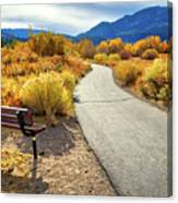 Golden Moments In Mammoth Canvas Print