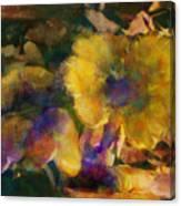 Golden Mushrooms Canvas Print