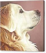 Golden Oldie Canvas Print