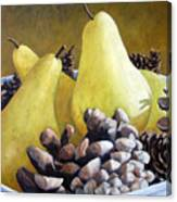 Golden Pears And Pine Cones Canvas Print