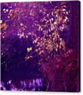 Golden Purples Canvas Print