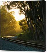 Golden Rails  9559l Canvas Print