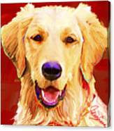 Golden Retriever 3 Canvas Print
