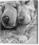 Golden Retriever Dog And Friend Canvas Print