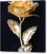 Golden Rose 1 Canvas Print
