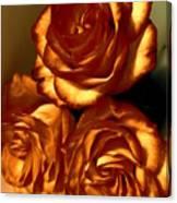 Golden Roses 3 Canvas Print