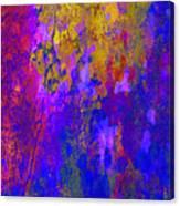 Golden Shine Canvas Print
