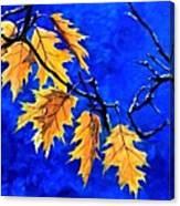 Golden Shining Leafs  Canvas Print