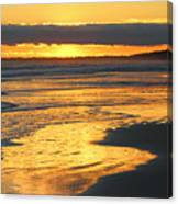Golden Shore Canvas Print