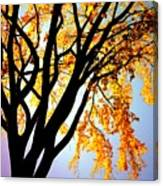 Golden Sillhouette Canvas Print