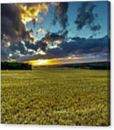 Golden Skies. Canvas Print