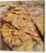 Golden Slopes Of Valley Of Fire State Park Canvas Print