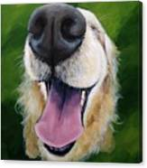 Golden Smile Canvas Print