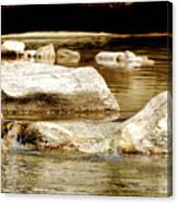 Golden Stream Canvas Print