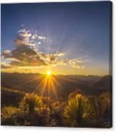 Golden Sunlight Desert Scene Canvas Print