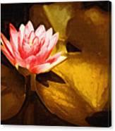 Golden Swamp Flower Canvas Print