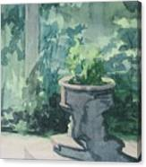Golden Swan Garden Canvas Print