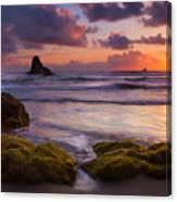 Golden Tides Canvas Print