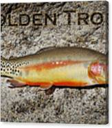 Golden Trout Canvas Print