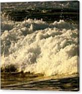 Golden White Wave Canvas Print