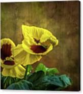 Golden Yellow Pensamientos Canvas Print