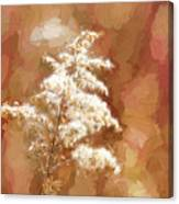 Goldenrod Plant In Fall Canvas Print