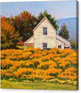Goldenrod Time Canvas Print