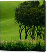 Golf Course Abstract Canvas Print