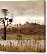 Gondwana Boab Canvas Print