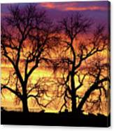 Good Morning Cows Colorful Sunrise Canvas Print