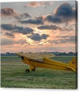 Good Morning Cub Canvas Print