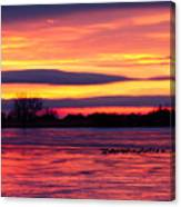 Good Morning Geese Canvas Print