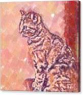 Good Tabby Canvas Print