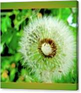 Good Wishes Canvas Print