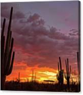 Goodnight Tucson Canvas Print