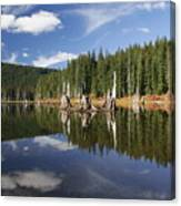 Goose Lake Canvas Print