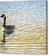 Goose On The Pond Canvas Print