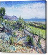Gordons Bay Western Cape South Africa Canvas Print