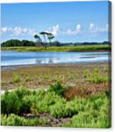 Gordons Pond At Cape Henlopen State Park - Delaware Canvas Print